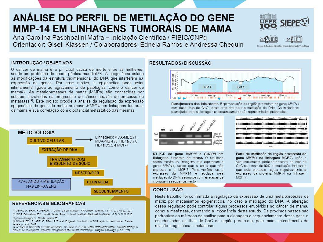 ANÁLISE DO PERFIL DE METILAÇÃO DO GENE MMP-14 EM LINHAGENS TUMORAIS DE MAMA Ana Carolina Paschoalini Mafra – Iniciação Científica / PIBIC/CNPq Orienta