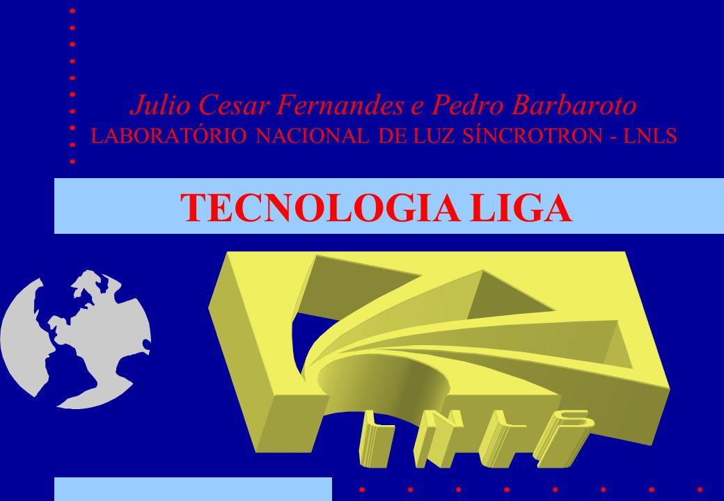 Julio Cesar Fernandes e Pedro Barbaroto LABORATÓRIO NACIONAL DE LUZ SÍNCROTRON - LNLS TECNOLOGIA LIGA