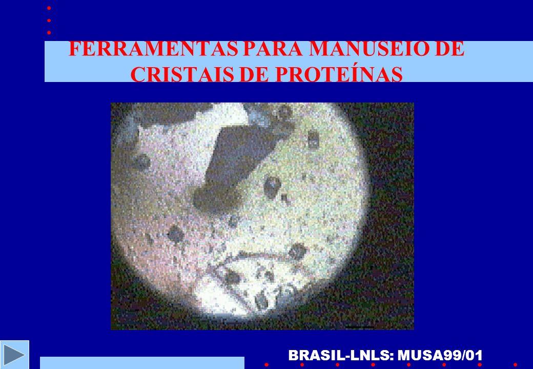 FERRAMENTAS PARA MANUSEIO DE CRISTAIS DE PROTEÍNAS BRASIL-LNLS: MUSA99/01
