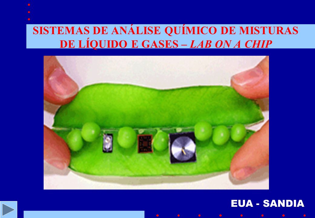 SISTEMAS DE ANÁLISE QUÍMICO DE MISTURAS DE LÍQUIDO E GASES – LAB ON A CHIP EUA - SANDIA