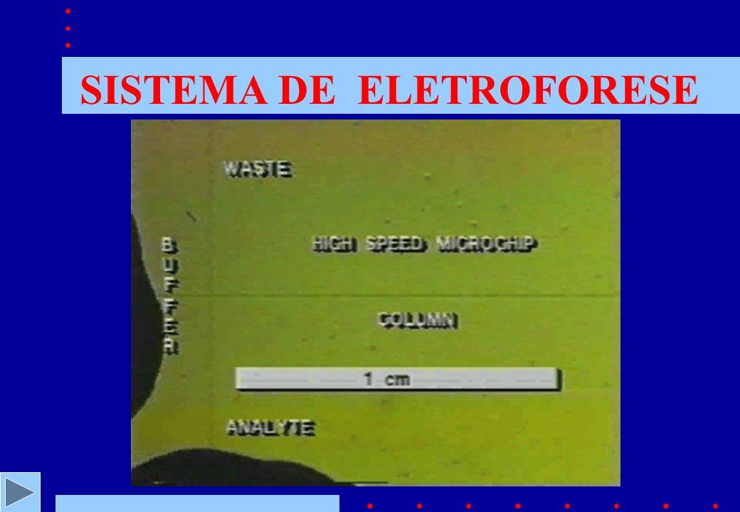 SISTEMA DE ELETROFORESE