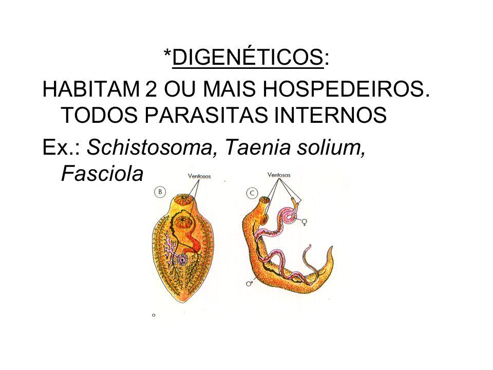 *DIGENÉTICOS: HABITAM 2 OU MAIS HOSPEDEIROS. TODOS PARASITAS INTERNOS Ex.: Schistosoma, Taenia solium, Fasciola