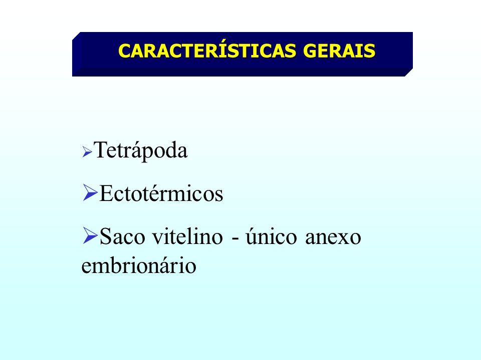 CARACTERÍSTICAS GERAIS Tetrápoda Ectotérmicos Saco vitelino - único anexo embrionário