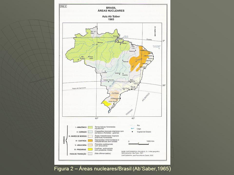 TEORIA DOS REFÚGIOS FLORESTAIS (FATOS PALEOGEOGRÁFICOS E PALEOECOLÓGICOS) AbSaber (1979): postulou que a desintegração das fitofisionomias no Brasil f