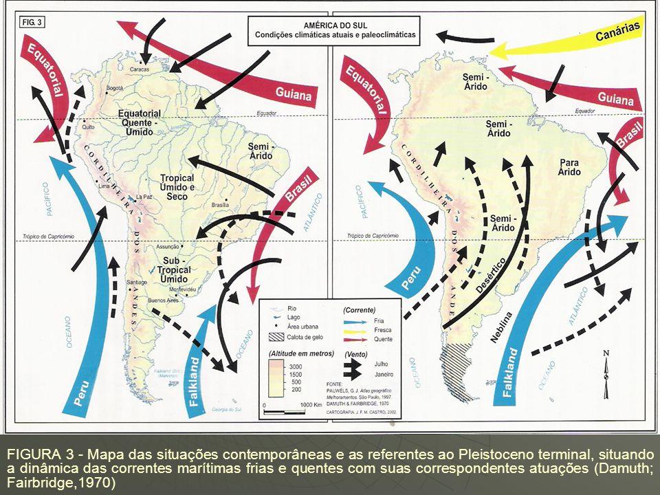 RESSECAMENTO CLIMÁTICO NOS PERÍODOS GLACIAIS DO QUATERNÁRIO RESSECAMENTO CLIMÁTICO NOS PERÍODOS GLACIAIS DO QUATERNÁRIO Damuth e Fairbridge (1970): pr