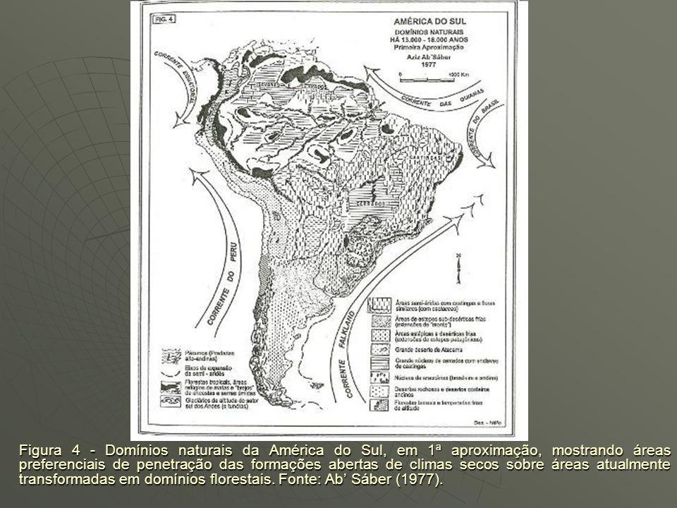 ÁREAS DE PENETRAÇÃO DAS FORMAÇÕES ABERTAS DE CLIMAS SECOS SOBRE ÁREAS ATUALMENTE TRANSFORMADAS EM DOMÍNIOS FLORESTAIS AbSaber (1977): fundamentado em