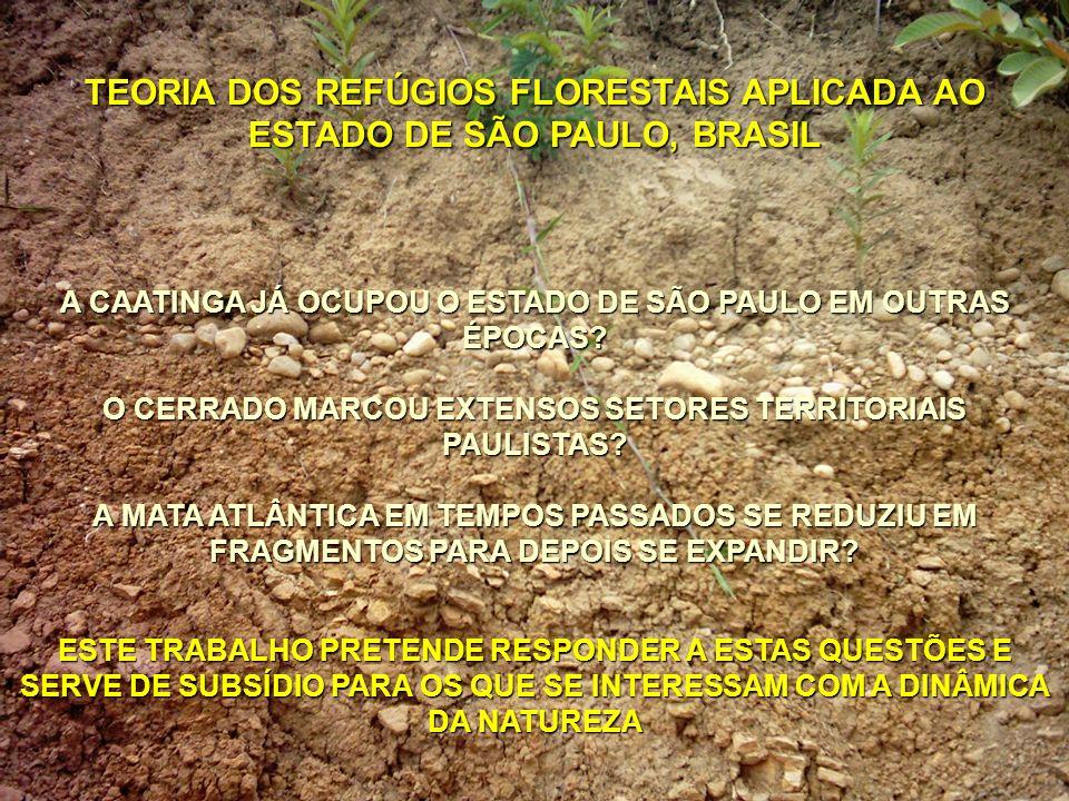 TEORIA DOS REFÚGIOS FLORESTAIS APLICADA AO ESTADO DE SÃO PAULO, BRASIL Prof. Dr. Adler Guilherme Viadana Depto. de Geografia UNIVERSIDADE ESTADUAL PAU