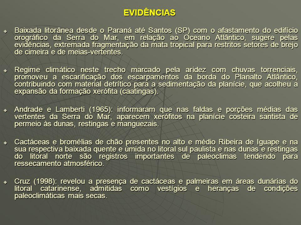 FUNDAMENTAÇÃO TEÓRICA E PRÁTICA Ab´Saber (1980); Fernandes (1990) e Andrade (1998): emprego do modelo real e descritivo sobre o domínio morfobioclimát