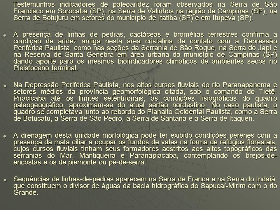 EVIDÊNCIAS O domínio paisagístico de mata se retraiu para as margens do Paranapanema e Paraná, porém com caudal reduzido se comparado ao que ostenta n