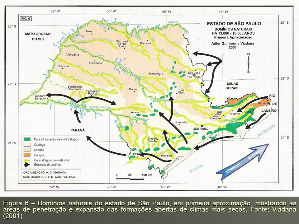 A bacia sedimentar de Rio Claro (SP), apresenta-se constituída em seção interplanáltica e instalada por entre as escarpas arenítico-basálticas, cuja g