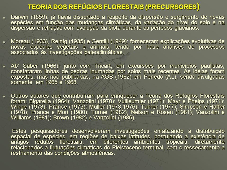 3) Notificação de pedregais e calhaus que pontilham as vertentes das morrarias. 4) Aferição de bancadas de areias brancas e finas com emergência na pa
