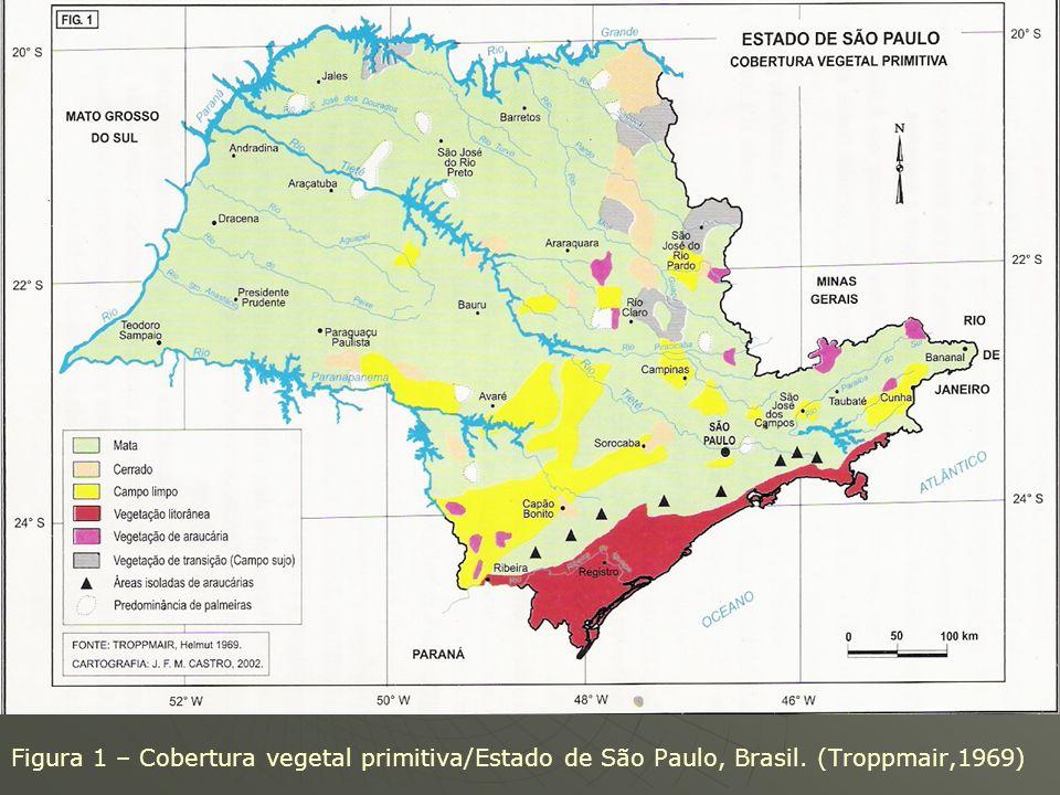 Meggers e Evans (1974): atestaram que as datações recentes dão conta que as terras amazônicas experimentaram períodos alternadamente secos e úmidos. M