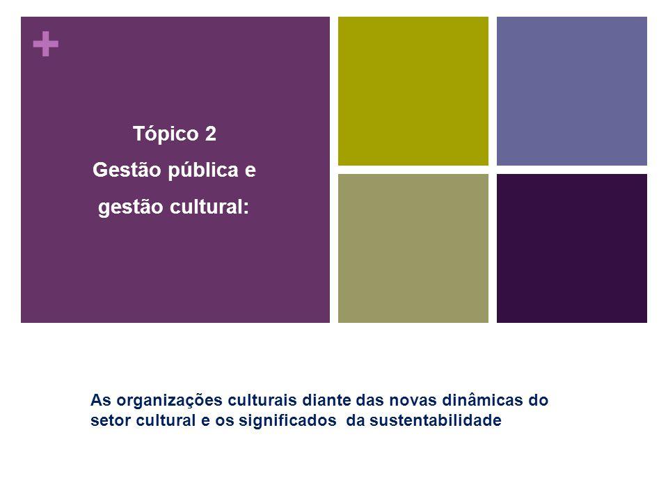 + Tópico 2 Gestão pública e gestão cultural: As organizações culturais diante das novas dinâmicas do setor cultural e os significados da sustentabilid