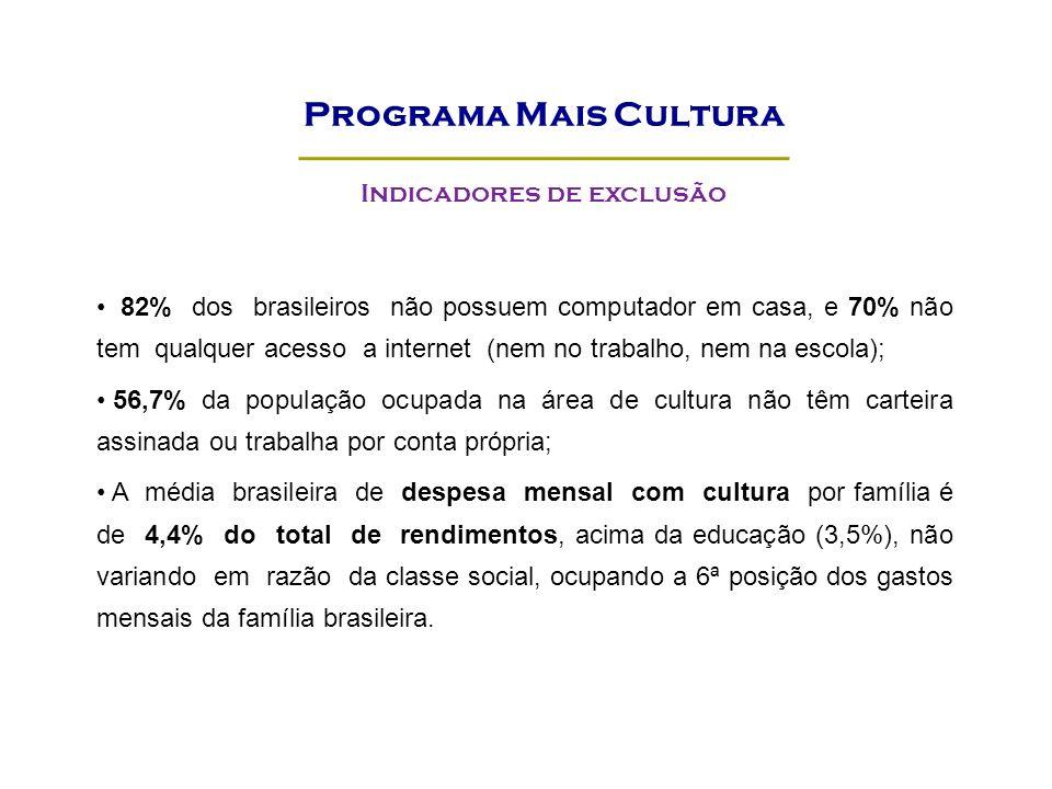 82% dos brasileiros não possuem computador em casa, e 70% não tem qualquer acesso a internet (nem no trabalho, nem na escola); 56,7% da população ocupada na área de cultura não têm carteira assinada ou trabalha por conta própria; A média brasileira de despesa mensal com cultura por família é de 4,4% do total de rendimentos, acima da educação (3,5%), não variando em razão da classe social, ocupando a 6ª posição dos gastos mensais da família brasileira.