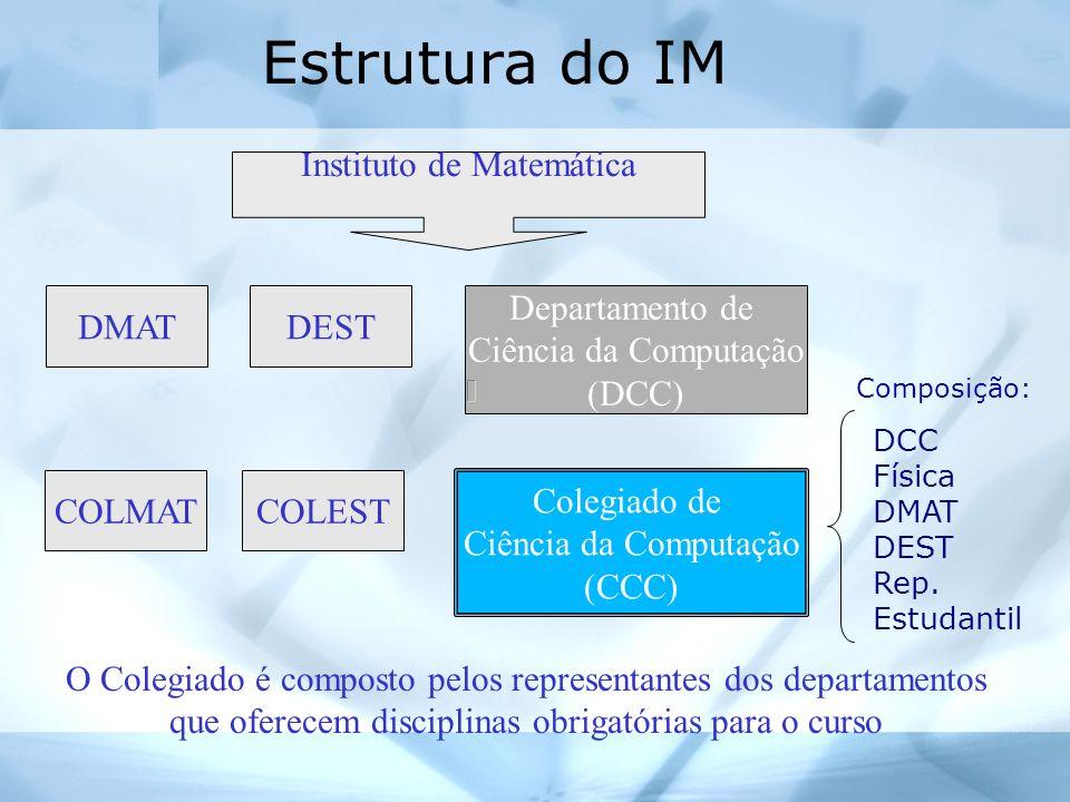 Estrutura do CCC Coordenador: Prof.Flavio Assis (computação) Vice-coordenadora: Profa.
