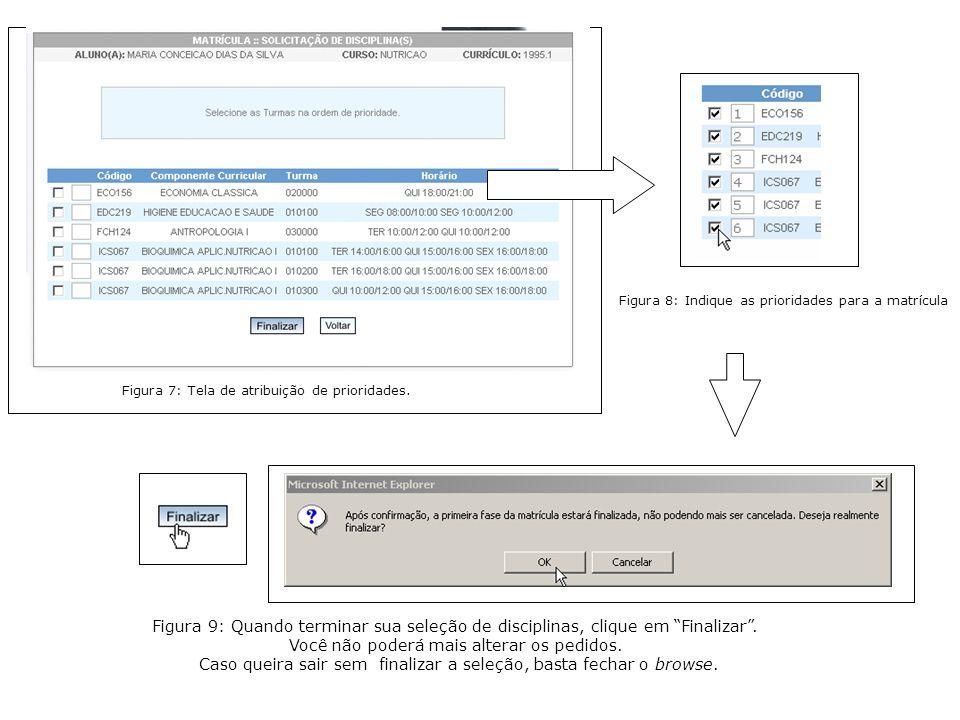 Figura 8: Indique as prioridades para a matrícula Figura 9: Quando terminar sua seleção de disciplinas, clique em Finalizar.