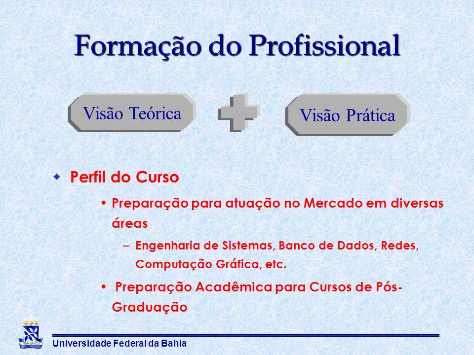 Universidade Federal da Bahia Visão Teórica Visão Prática Formação do Profissional Perfil do Curso Preparação para atuação no Mercado em diversas área