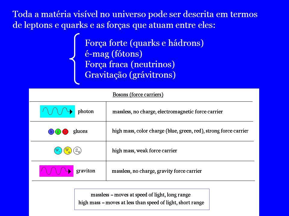 Toda a matéria visível no universo pode ser descrita em termos de leptons e quarks e as forças que atuam entre eles: Força forte (quarks e hádrons) é-