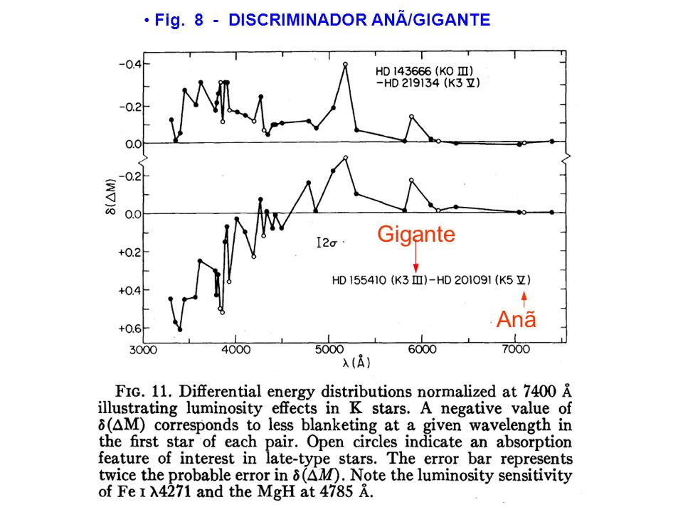 Fig. 8 - DISCRIMINADOR ANÃ/GIGANTE Gigante Anã