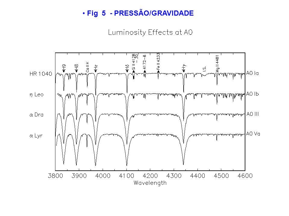 Fig 5 - PRESSÃO/GRAVIDADE