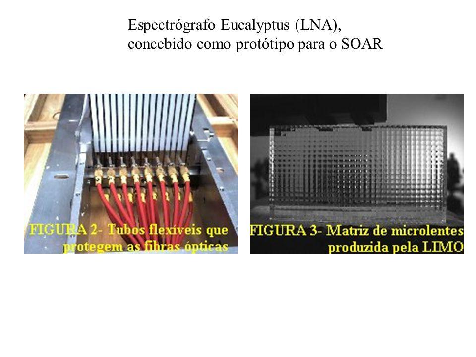 Espectrógrafo Eucalyptus (LNA), concebido como protótipo para o SOAR