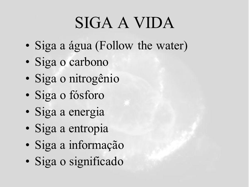 SIGA A VIDA Siga a água (Follow the water) Siga o carbono Siga o nitrogênio Siga o fósforo Siga a energia Siga a entropia Siga a informação Siga o significado