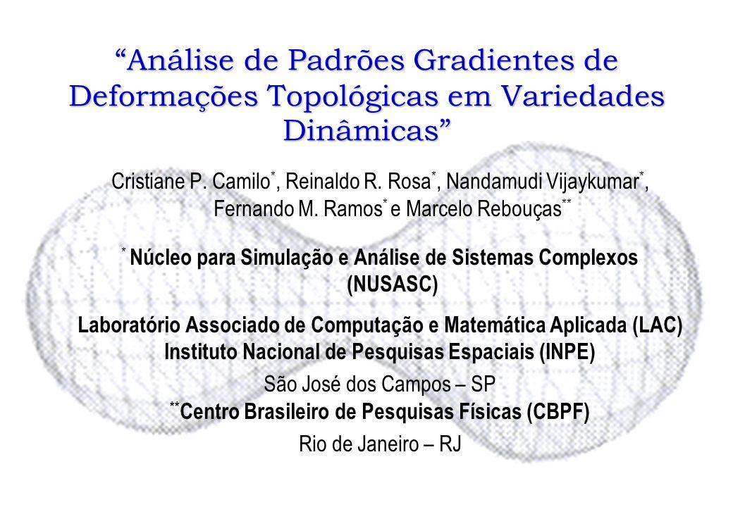 Análise de Padrões Gradientes de Deformações Topológicas em Variedades Dinâmicas Cristiane P. Camilo *, Reinaldo R. Rosa *, Nandamudi Vijaykumar *, Fe