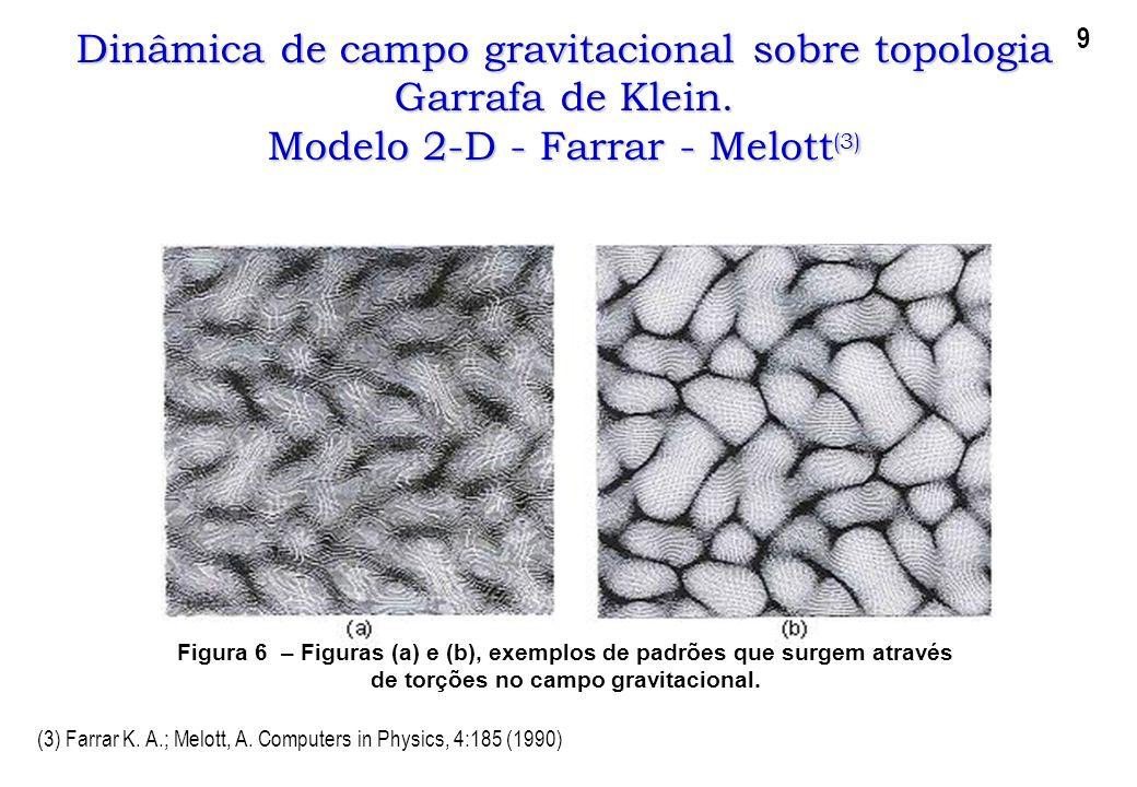 Dinâmica de campo gravitacional sobre topologia Garrafa de Klein. Modelo 2-D - Farrar - Melott (3) Figura 6 – Figuras (a) e (b), exemplos de padrões q