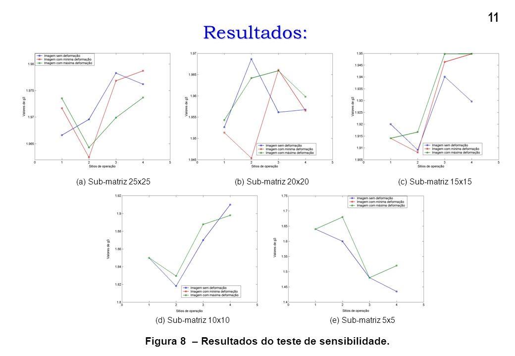 (a) Sub-matriz 25x25(b) Sub-matriz 20x20(c) Sub-matriz 15x15Resultados: (d) Sub-matriz 10x10(e) Sub-matriz 5x5 Figura 8 – Resultados do teste de sensi