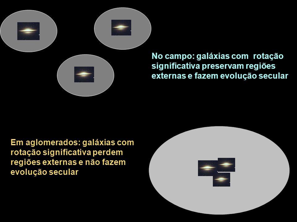 No campo: galáxias com rotação significativa preservam regiões externas e fazem evolução secular Em aglomerados: galáxias com rotação significativa perdem regiões externas e não fazem evolução secular