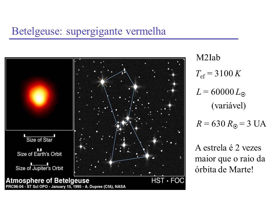 Betelgeuse: supergigante vermelha T ef = 3100 K L = 60000 L M2Iab R = 630 R = 3 UA A estrela é 2 vezes maior que o raio da órbita de Marte! (variável)