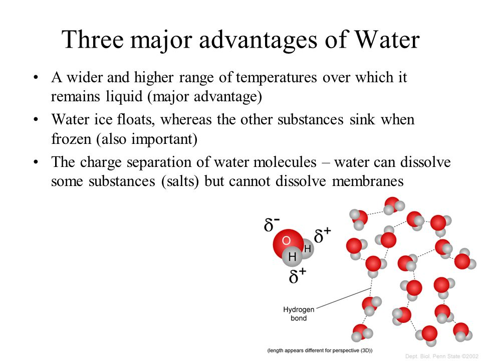 Three major advantages of Water A wider and higher range of temperatures over which it remains liquid (major advantage) Water ice floats, whereas the