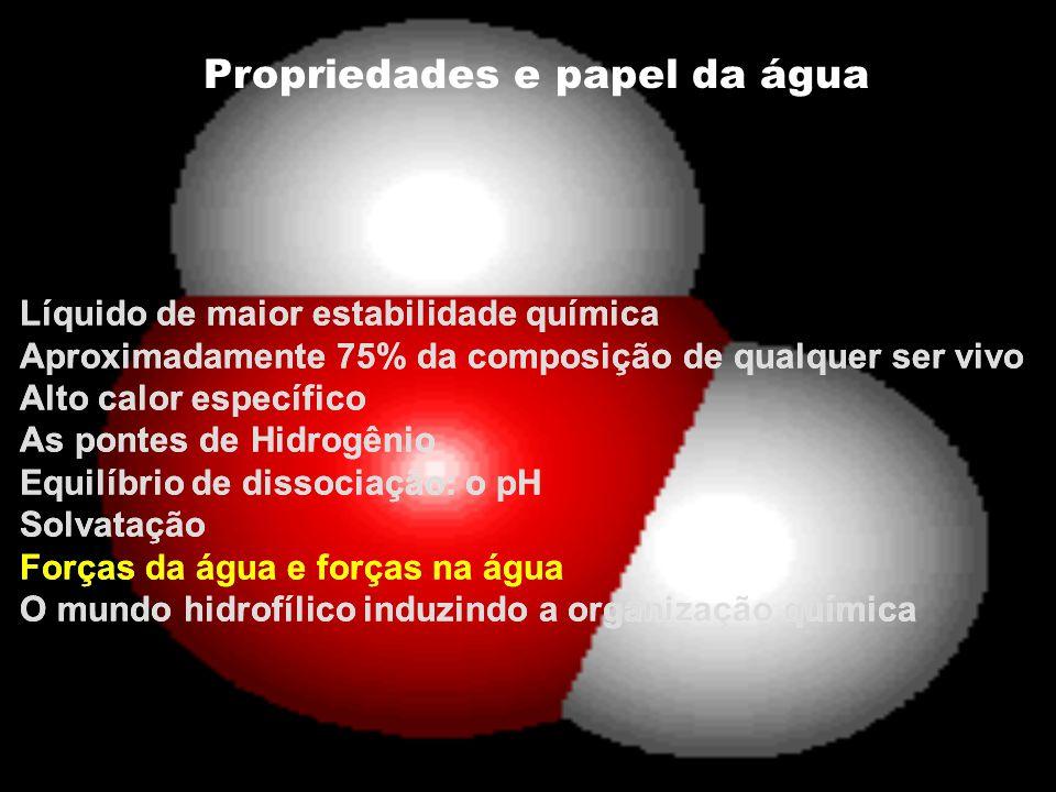 Propriedades e papel da água Líquido de maior estabilidade química Aproximadamente 75% da composição de qualquer ser vivo Alto calor específico As pon