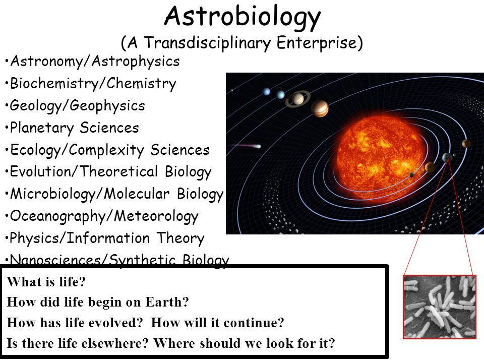 What is life? How did life begin on Earth? How has life evolved? How will it continue? Is there life elsewhere? Where should we look for it? Astrobiol