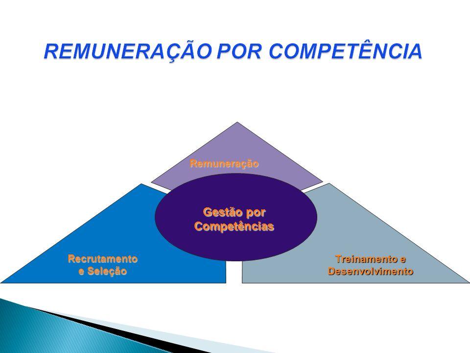 Remuneração Recrutamento e Seleção Treinamento e Desenvolvimento Gestão por Competências