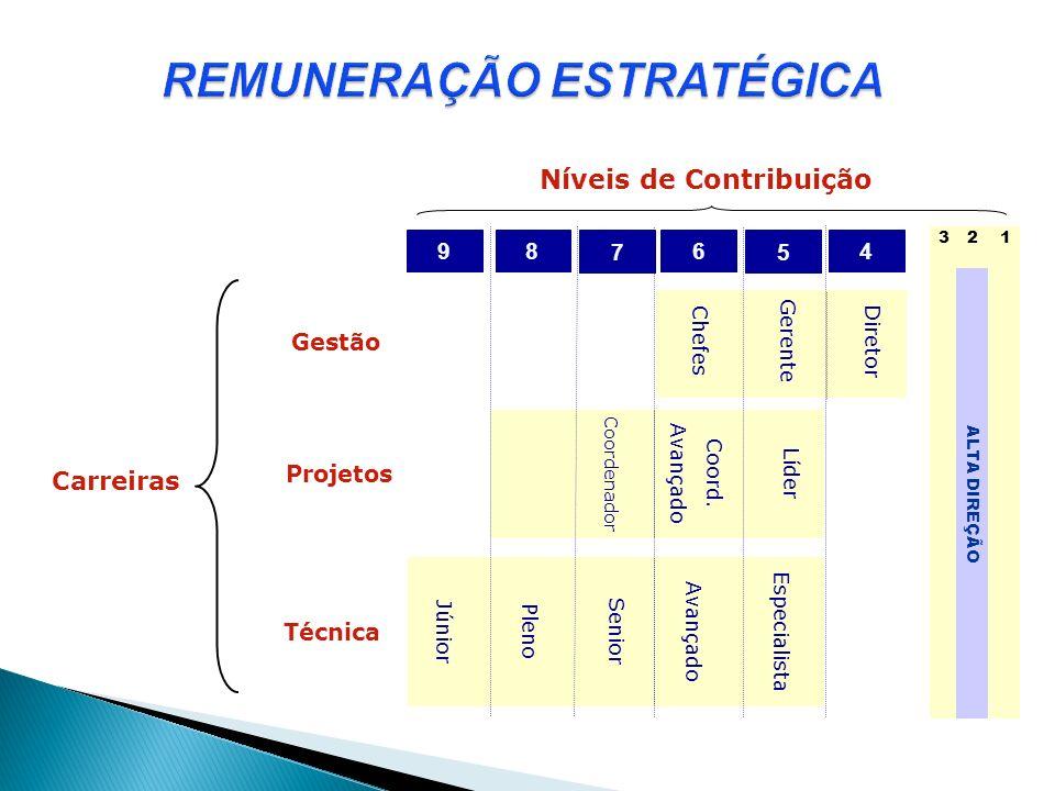 Carreiras Gestão Projetos Técnica Níveis de Contribuição 4 7 89 5 6 Diretor GerenteChefes Líder Coord. Avançado Coordenador EspecialistaAvançadoSenior