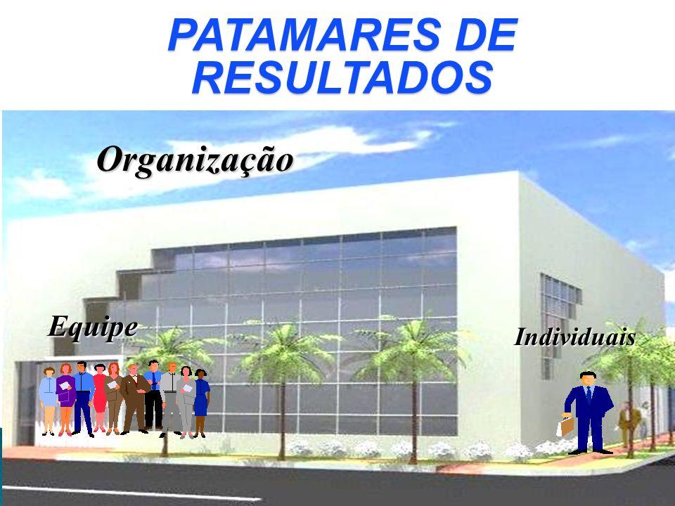Organização Equipe Individuais PATAMARES DE RESULTADOS