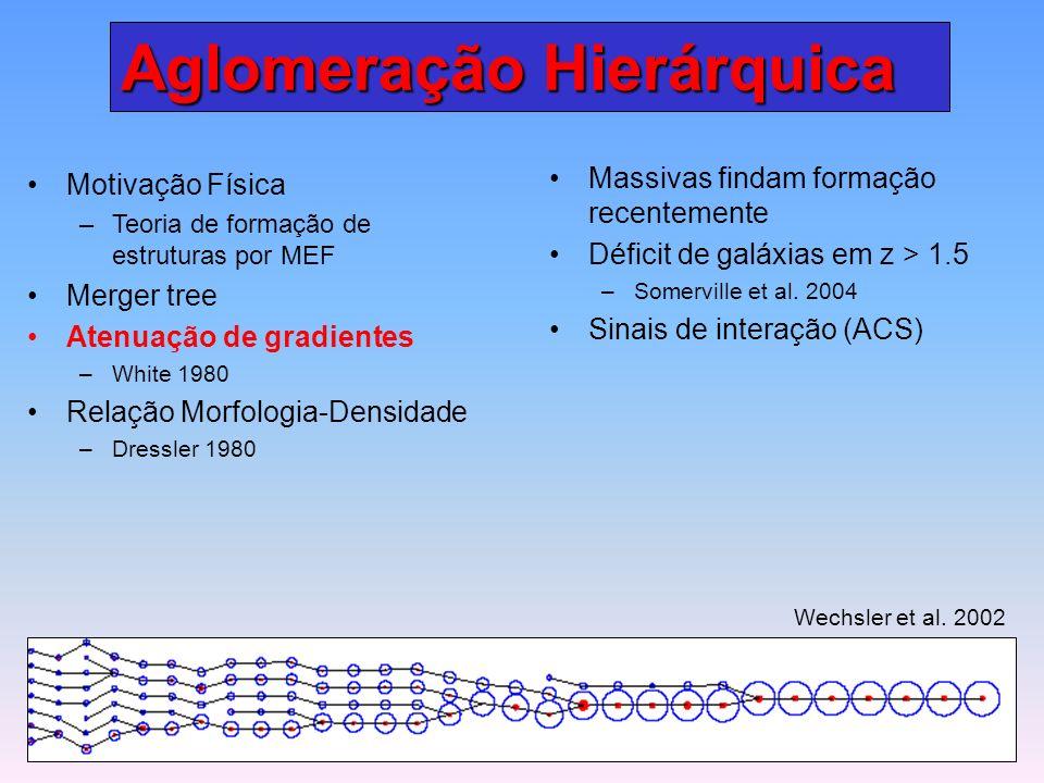 Aglomeração Hierárquica Motivação Física – –Teoria de formação de estruturas por MEF Merger tree Atenuação de gradientes – –White 1980 Relação Morfologia-Densidade – –Dressler 1980 Massivas findam formação recentemente Déficit de galáxias em z > 1.5 – –Somerville et al.