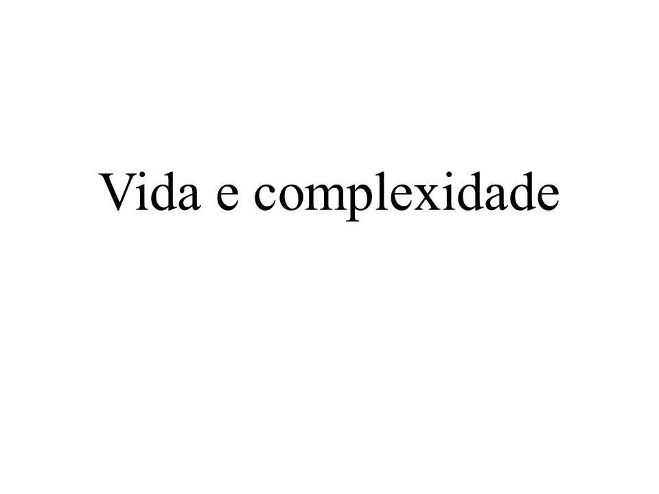 Vida e complexidade
