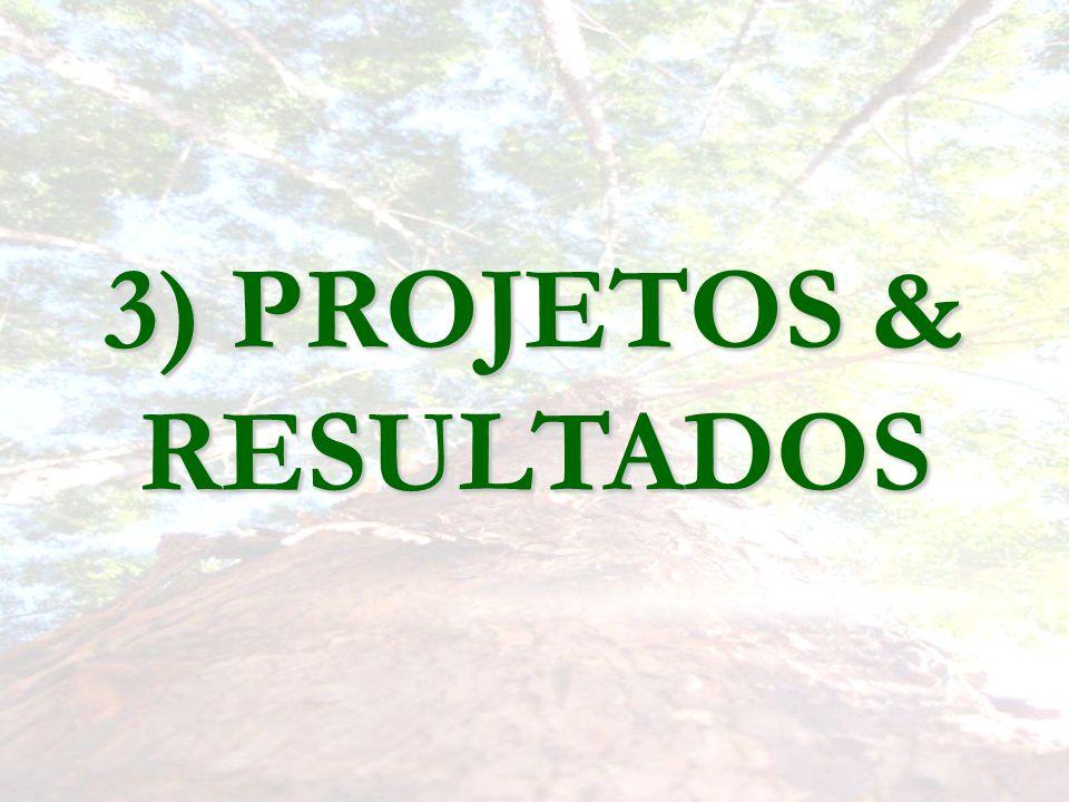 3) PROJETOS & RESULTADOS