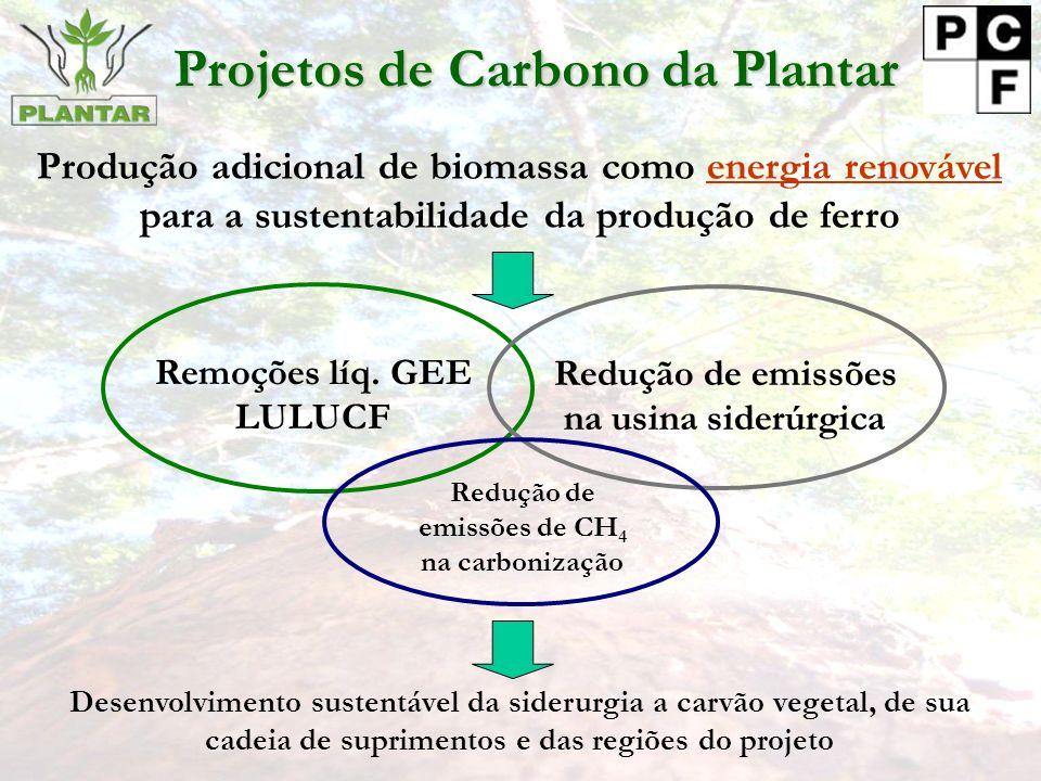 Produção adicional de biomassa como energia renovável para a sustentabilidade da produção de ferro Projetos de Carbono da Plantar Desenvolvimento sustentável da siderurgia a carvão vegetal, de sua cadeia de suprimentos e das regiões do projeto Remoções líq.