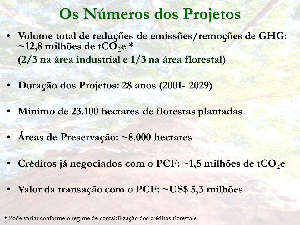 Volume total de reduções de emissões/remoções de GHG: ~12,8 milhões de tCO 2 e * 2/3 na área industrial1/3 na área florestal (2/3 na área industrial e 1/3 na área florestal) Duração dos Projetos: 28 anos (2001- 2029) Mínimo de 23.100 hectares de florestas plantadas Áreas de Preservação: ~8.000 hectares Créditos já negociados com o PCF: ~1,5 milhões de tCO 2 e Valor da transação com o PCF: ~US$ 5,3 milhões Os Números dos Projetos * Pode variar conforme o regime de contabilização dos créditos florestais