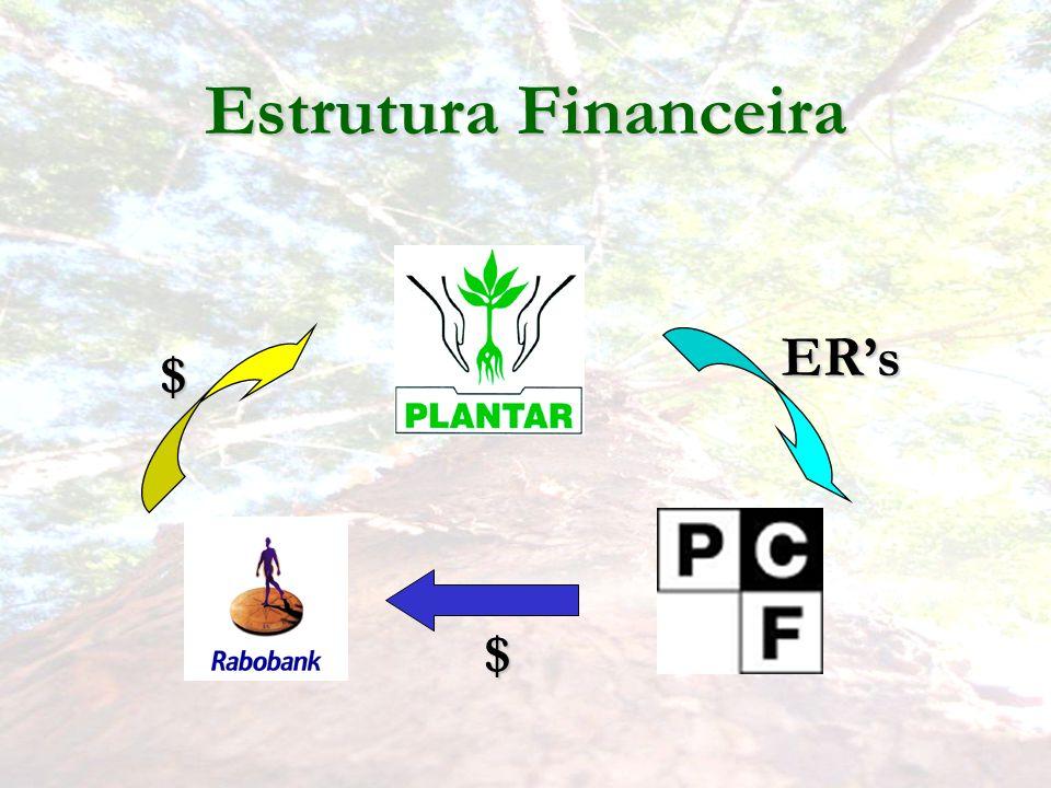 Estrutura Financeira ERs $ $