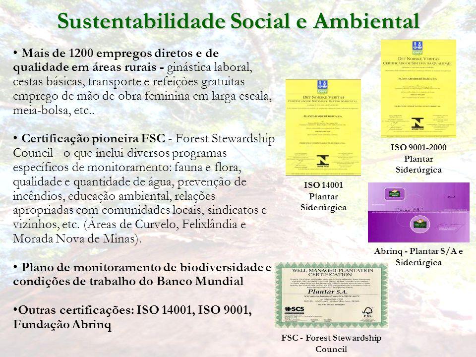 Sustentabilidade Social e Ambiental Mais de 1200 empregos diretos e de qualidade em áreas rurais - ginástica laboral, cestas básicas, transporte e refeições gratuitas emprego de mão de obra feminina em larga escala, meia-bolsa, etc..