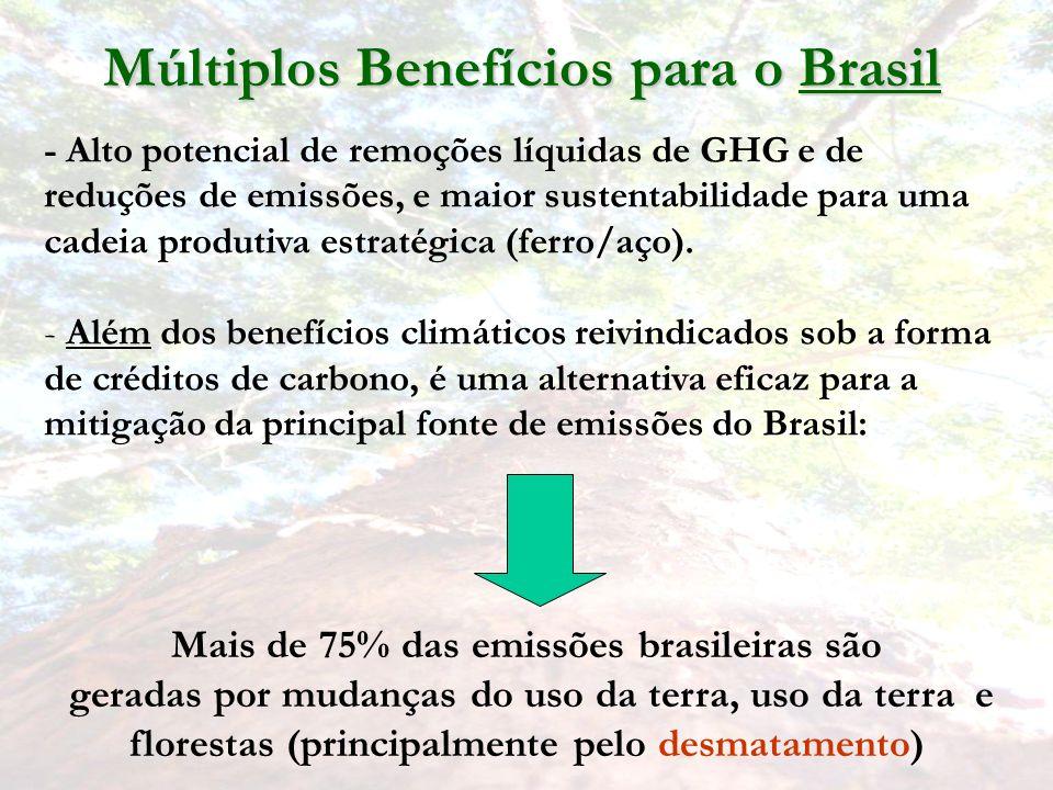 Múltiplos Benefícios para o Brasil - Alto potencial de remoções líquidas de GHG e de reduções de emissões, e maior sustentabilidade para uma cadeia produtiva estratégica (ferro/aço).
