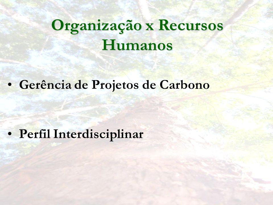 Gerência de Projetos de Carbono Perfil Interdisciplinar Organização x Recursos Humanos