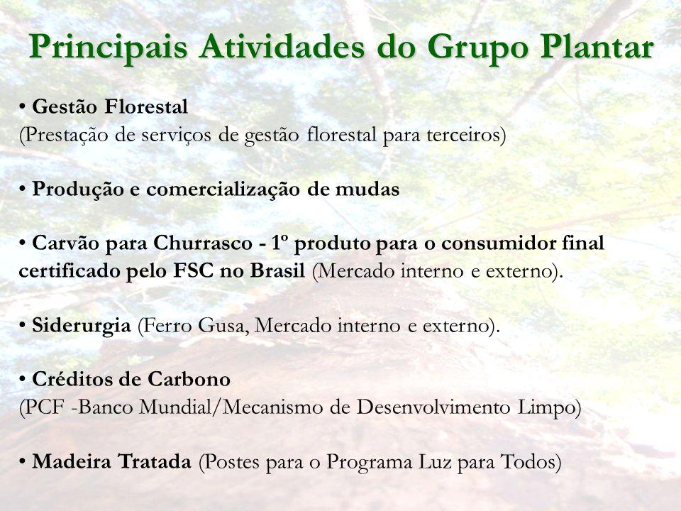 Principais Atividades do Grupo Plantar Gestão Florestal (Prestação de serviços de gestão florestal para terceiros) Produção e comercialização de mudas Carvão para Churrasco - 1º produto para o consumidor final certificado pelo FSC no Brasil (Mercado interno e externo).