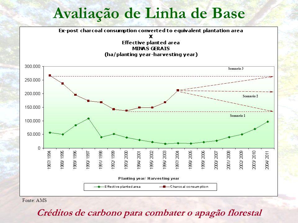 Fonte: AMS Scenario 1 Scenario 2 Scenario 3 Avaliação de Linha de Base Créditos de carbono para combater o apagão florestal