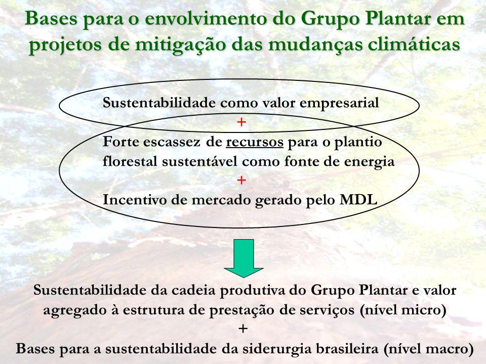 Bases para o envolvimento do Grupo Plantar em projetos de mitigação das mudanças climáticas Sustentabilidade da cadeia produtiva do Grupo Plantar e valor agregado à estrutura de prestação de serviços (nível micro) + Bases para a sustentabilidade da siderurgia brasileira (nível macro) Sustentabilidade como valor empresarial + Forte escassez de recursos para o plantio florestal sustentável como fonte de energia + Incentivo de mercado gerado pelo MDL