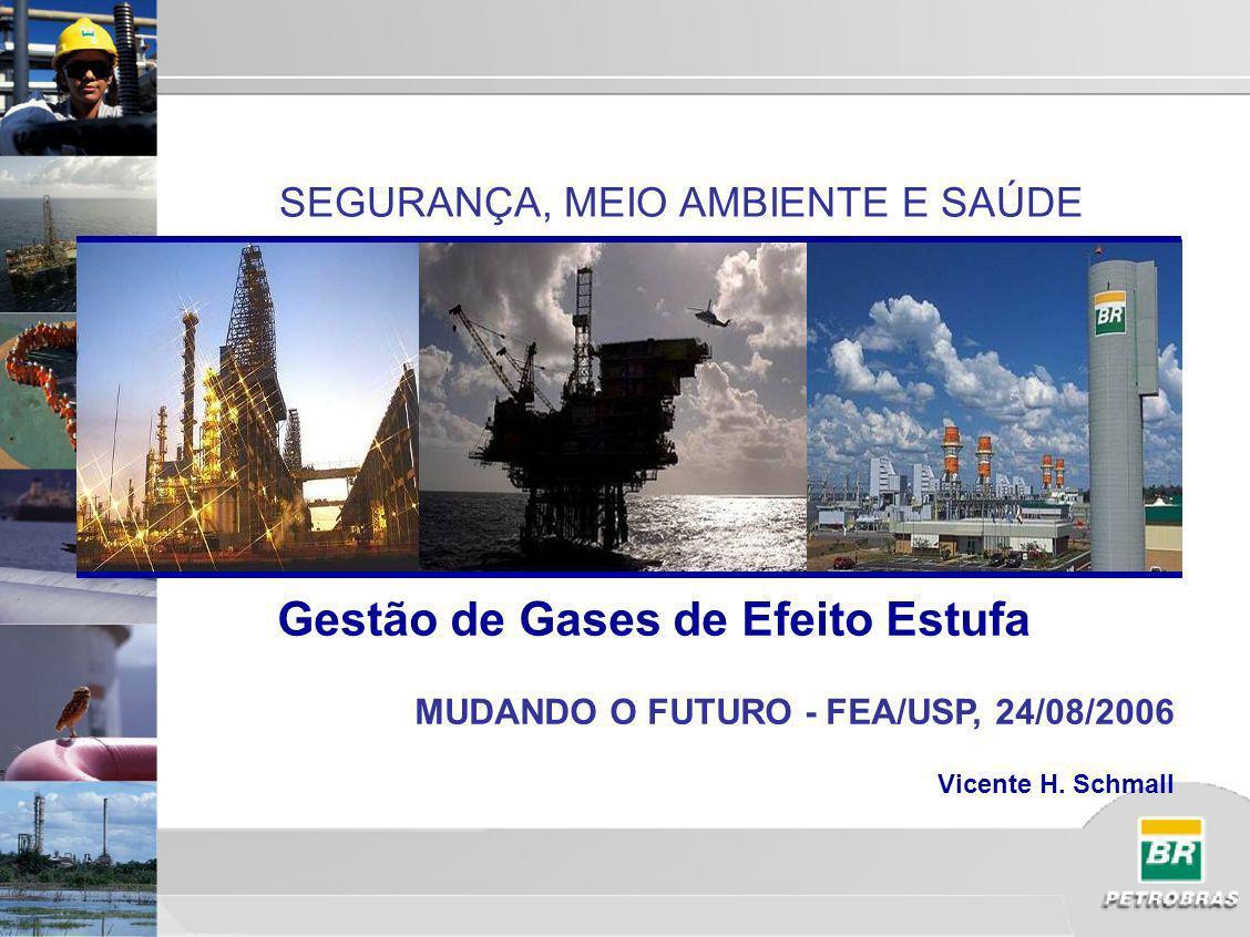 SEGURANÇA, MEIO AMBIENTE E SAÚDE Gestão de Gases de Efeito Estufa MUDANDO O FUTURO - FEA/USP, 24/08/2006 Vicente H.